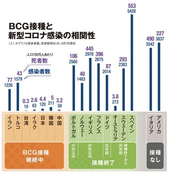 BCG接種仮説.jpg