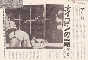 「ナイロンの罠」(1980年).jpg